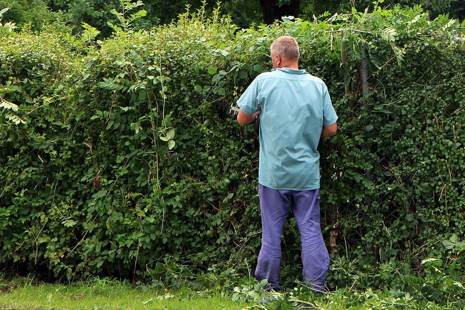 la corvée de l'entretien du jardin