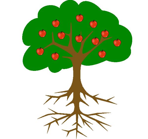 les plantes meurent si leurs racines ne se sont pas développées