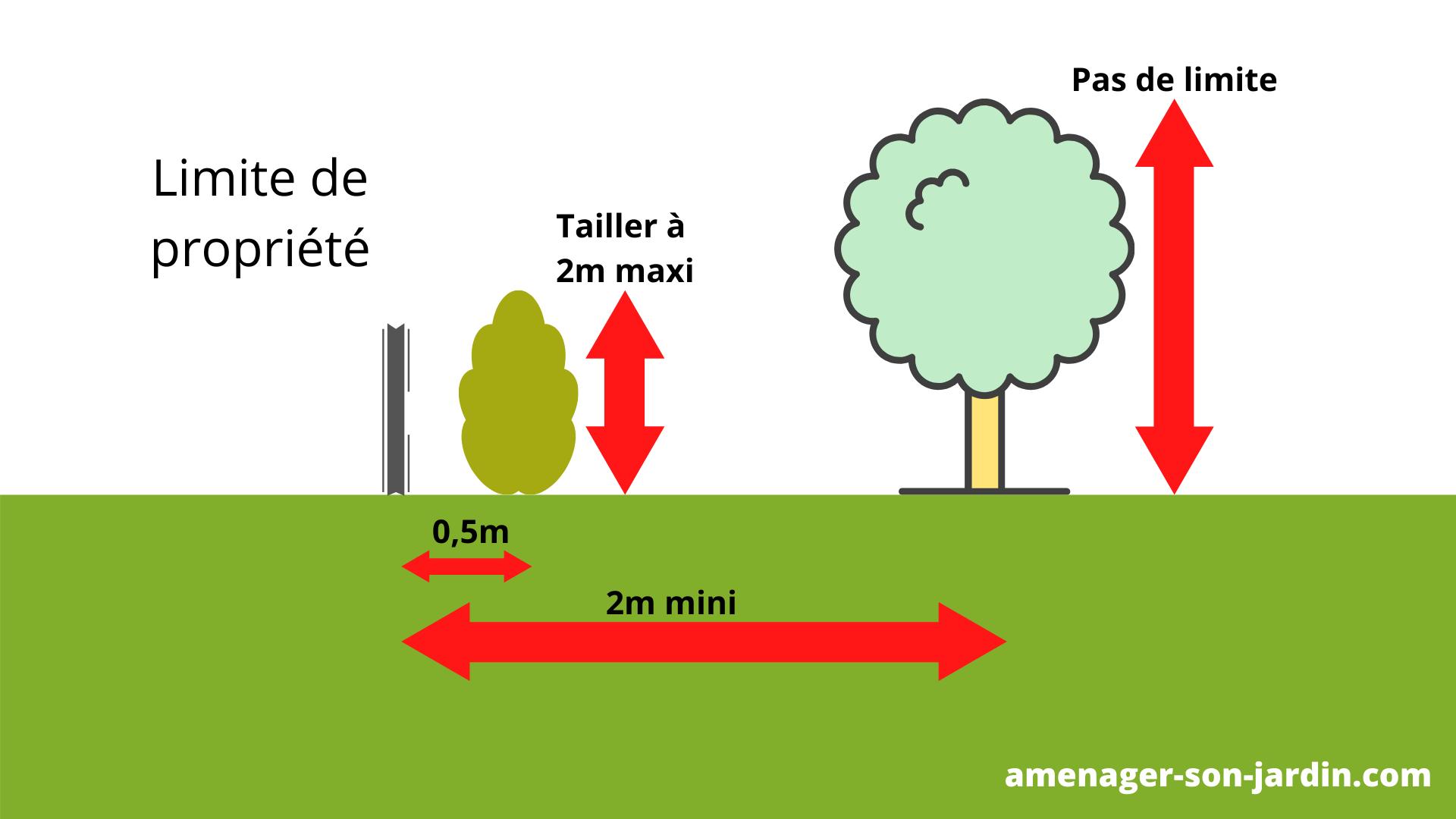 schéma distance de plantation d'un arbre contre le vis à vis des voisins
