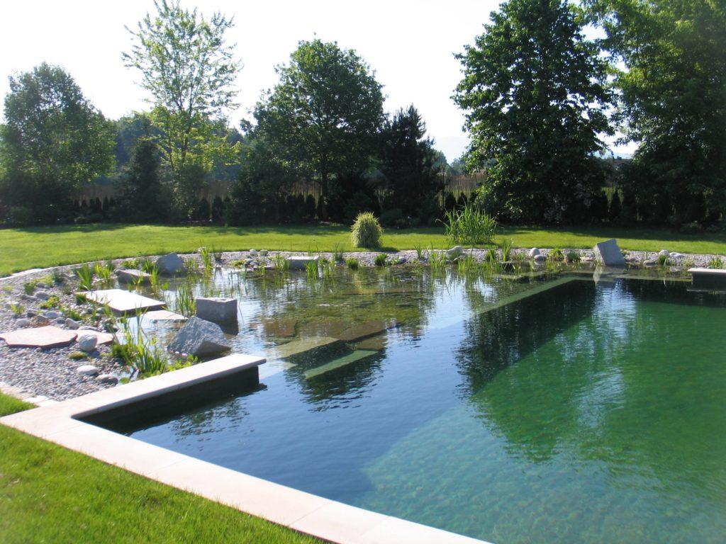 jardinier paysagiste spécialisé piscine naturelle