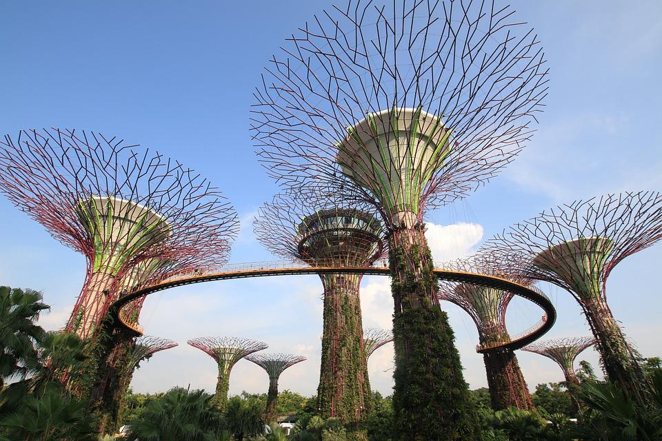 architecte paysagiste du monde