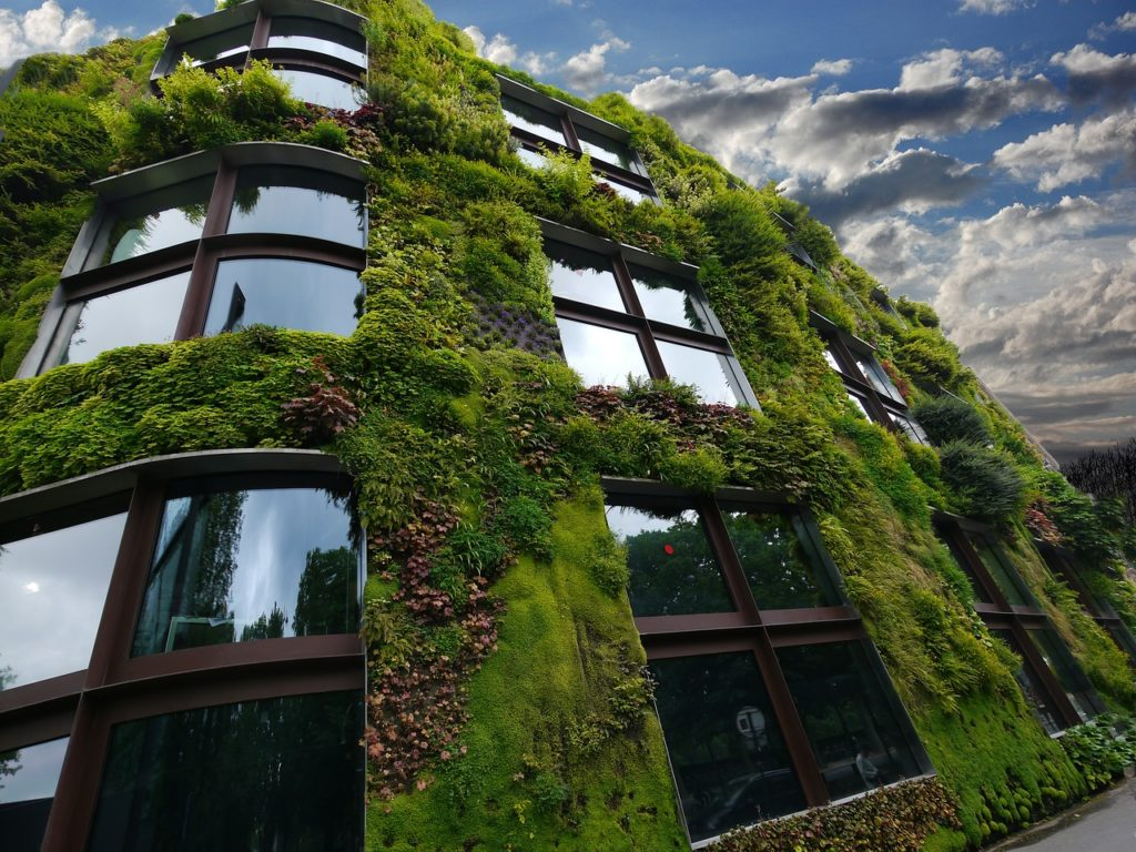 jardinier paysagiste mur végétalisé