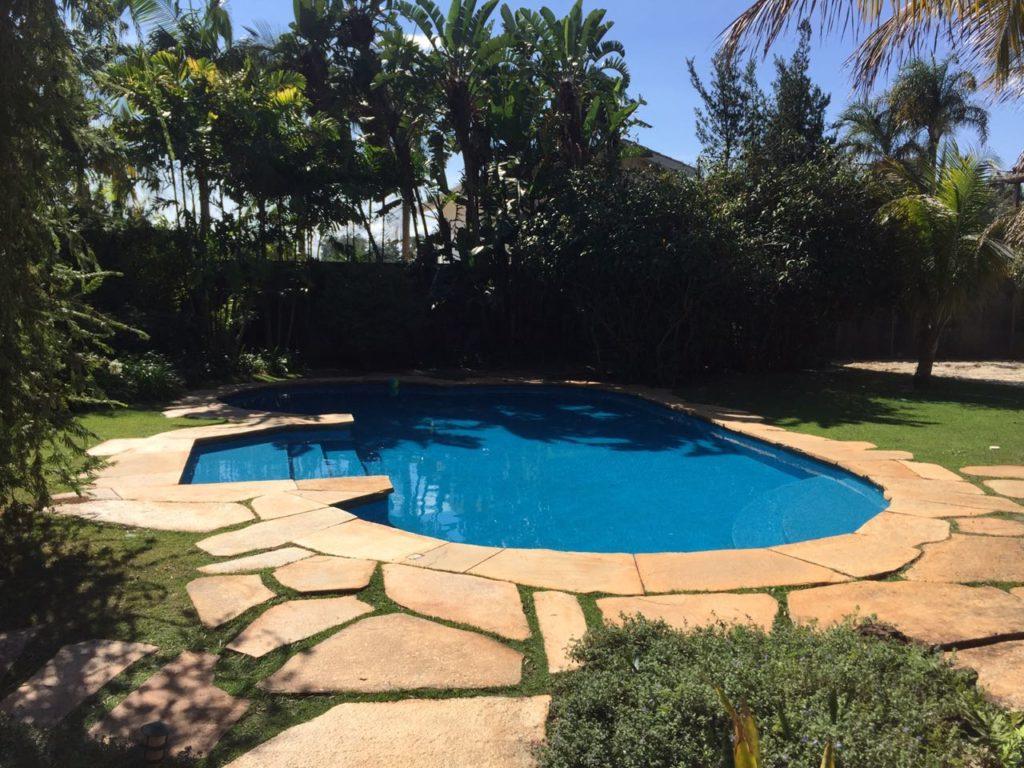 aménagement de piscine avec des palmiers contre les vis à vis