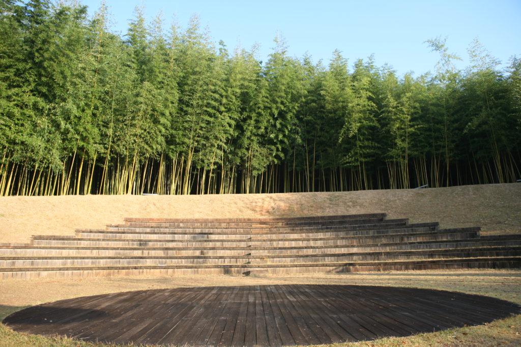idée d'écran végétal avec des bambous pour cacher la vue des voisins sur la piscine