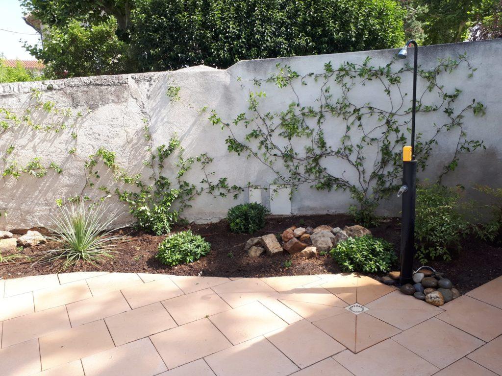 nombre de plantes grimpantes pour recouvrir un vieux mur
