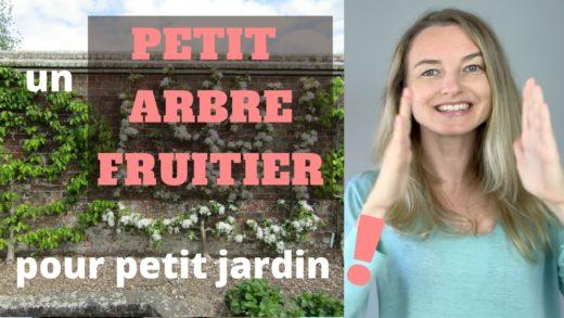 La paysagiste Maud parle des petits arbres fruitiers pour petit jardin